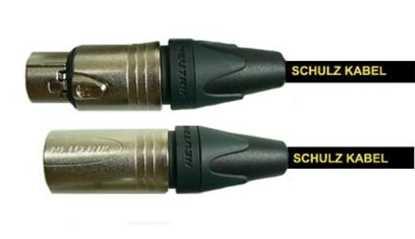 Schultz RBM3