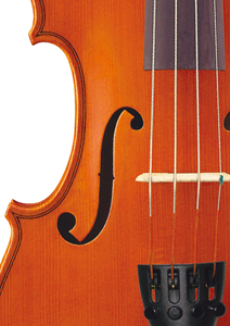 Bild för kategori Violiner
