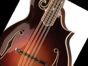 Bild för kategori Mandolin