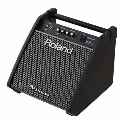 Roland Monitor PM-100