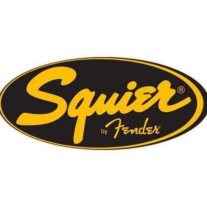 Vanliga Tillbehör till Squier Elgitarr